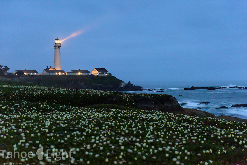 Pigeon Point Light house and Hostel south of San Francisco, California along the pacific coast.
