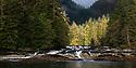 Dramatic light on small river /stream estuary. Great Bear Rainforest, British Columbia, Canada. September 2018