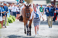 AUS-Emma McNab presents Fernhill Tabasco during the First Horse Inspection for the FEI World Team and Individual Eventing Championship. 2018 FEI World Equestrian Games Tryon. Wednesday 12 September. Copyright Photo: Libby Law Photography