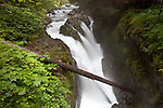 Sol Duc Falls in Olympic NP