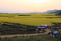 Luoping, Yunnan. The Hills of the Golden Rooster at sunset.