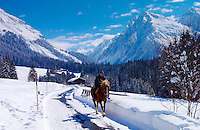 Man riding his home home at Klosters - Amongst the Silvretta group of the Swiss Alps. Road to Silvretta.Mountain at right is P.Linard 3411 metres high