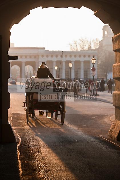 Europe/Autriche/Niederösterreich/Vienne: Fiacre sur Helden Platz