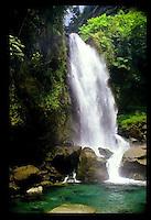 IT-Dominica