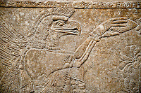 Assyrian relief sculpture panel  of an eagle headed protective spirit  from Nimrud, Iraq.  The spirit is holding a symbolic fir cone and is sprinkling holy water. 865-860 B.C North West Palace, Room F, panel 3.  British Museum Assyrian  Archaeological exhibit  ref WA 124584-5