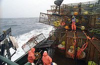 "Crewmen get a crab pot ready to be offloaded on the fishing vessel Polar Lady during the opilio crab season in the Bering Sea in January and February of 1995.  Crewman Gary Soper (right top) is working ""the stack"" which could be up to 250 pots by regulation in the 1990's for this size vessel. The Bering Sea is known for having the worst storms in the world.  Crab fishing in the Bering Sea is considered to be one of the most dangerous jobs in the world.  This fishery is managed by the Alaska Department of Fish and Game and is a sustainable fishery.  The Discovery Channel produced a TV series called ""The Deadliest Catch"" which popularized this fishery."