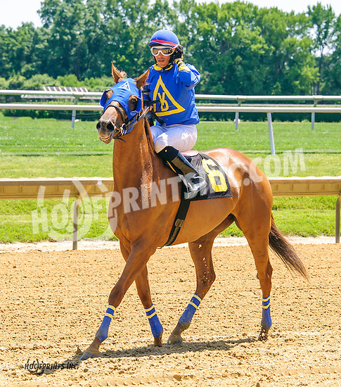 Odlum winning at Delaware Park on 6/18/16