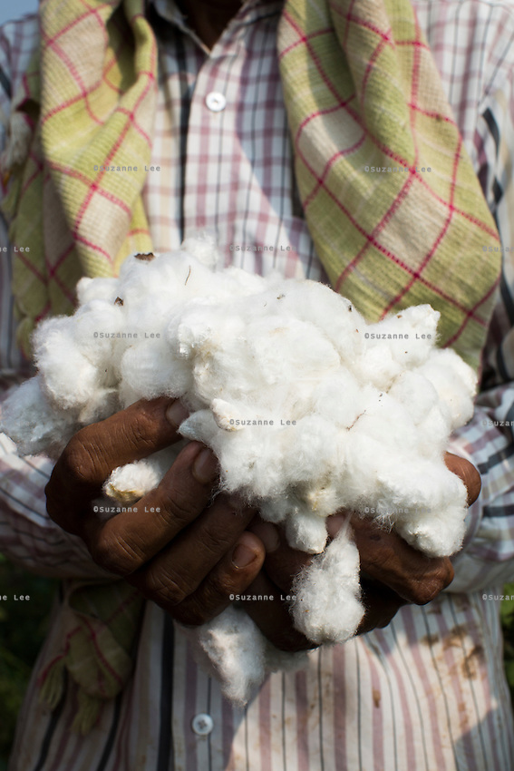 Fairtrade cotton farmer Nandaram Jat, 40, in their farm in Maheshwar, Khargone, Madhya Pradesh, India on 13 November 2014. Sugna and Nandaram do the farming together and hire labourers at a fair wage when they need to. Photo by Suzanne Lee for Fairtrade
