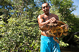 BRAZIL, Agua Boa, fishing guide holding a river turtle that he dove off of the boat to catch, Agua Boa River and resort