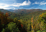 Nantahala National Forest, North Carolina, USA