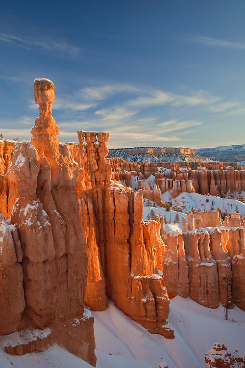 Thor's Hammer and the at Bryce Canyon National Park, Utah, USA