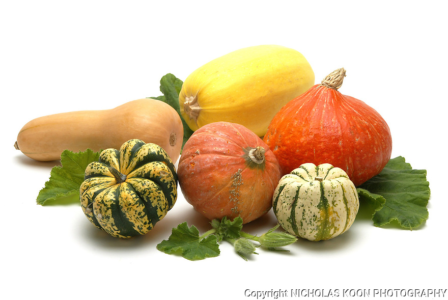 Winter Squash still life.