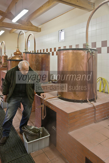 Europe/France/Aquitaine/24/Dordogne/Villamblard: Distillerie Clovis Reymond - Distillation alcool de fruit de poire William [Non destiné à un usage publicitaire - Not intended for an advertising use]