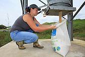 Stockage d'aliments d'engraissement destinés à la volaille (Christelle Appaganou, éleveuse à Bourail)