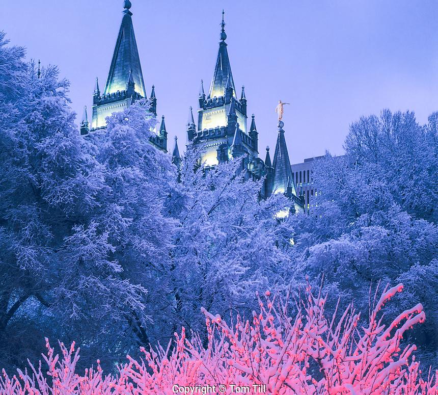 Snowy Christmas at Temple Square, Salt Lake City, Utah  Church of Jesus Christ of Latter Day Saints