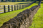 A stone fence and a wooden fence line a green pasture In horse country, Lexington, Kentucky, USA