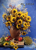Interlitho-Helga, FLOWERS, BLUMEN, FLORES, photos+++++,sunflowers on blue,KL16514,#f#, EVERYDAY ,sunflowers