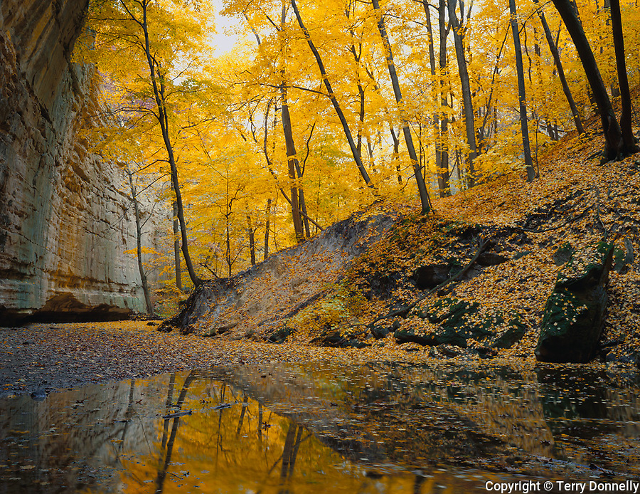 Starved Rock State Park, IL<br /> Sandstone wall of Ottawa Canyon and fall colored reflections