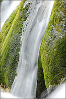 Water flows down a green moss covered rock. Jiuzhaigou Valley, China.