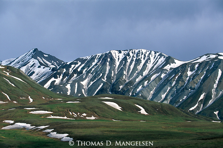 Thorofare Pass in Denali National Park, Alaska.