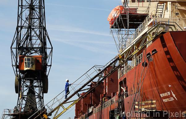 Havenwerkzaamheden  in Amsterdam-Noord. Scheepswerf