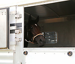 Driver Louis Careccio and assistant trainer Jorge Duarte wait outside of the stable gate after showing proof of health certificates and negative coggins for the horses they are shipping in. Parx Racing in Bensalem, Pennsylvania on July 4, 2017. Photo By Taylor Ejdys/EQUI-PHOTO