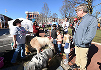 NWA Democrat-Gazette/FLIP PUTTHOFF <br />Rebecca Christian (left) with Autumn's ReRide Youth Ranch shows Saturday Nov. 30 2019 miniature horses she brought to the Winter Market and Arts Festival on the Bentonville square.