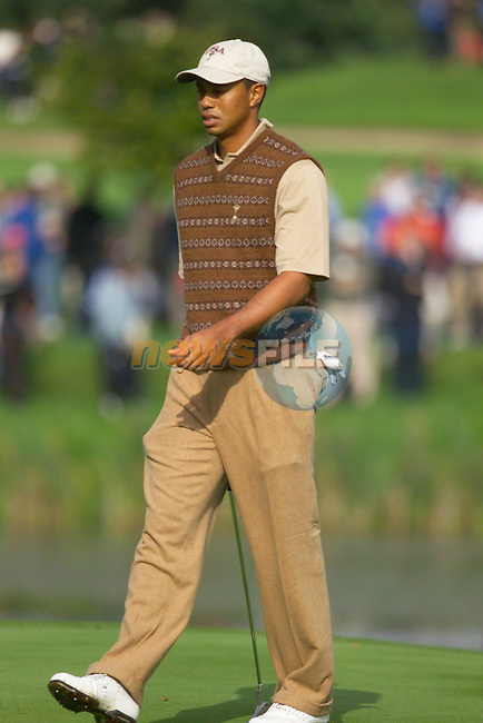 Tiger Woods on the 13th green during Practice Day2 the 2006 Ryder Cup at The K Club 21st September 2006.( Photo Eoin Clarke/Newsfile)
