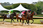 HOT SPRINGS, AR - APRIL 13:  Fantasy Stakes at Oaklawn Park on April 13, 2018 in Hot Springs, Arkansas. #8 Wonder Gadot with jockeyDavid Cabrera and #6 Amy?s Challenge with jockey Mike E. Smith (Photo by Ted McClenning/Eclipse Sportswire/Getty Images)