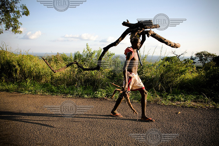 A young man walking with firewood on his head and a manioc root in his hand on the road between Bangui and Bossembele.