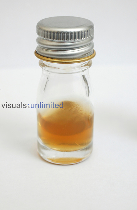 A small glass jar containing brown liquid. Royalty Free