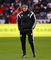 Swansea head coach Francesco Guidolin before the Barclays Premier League match between Swansea City and Crystal Palace at the Liberty Stadium, Swansea on February 06 2016