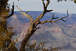 Grand Canyon National Park, Hermit Rd.