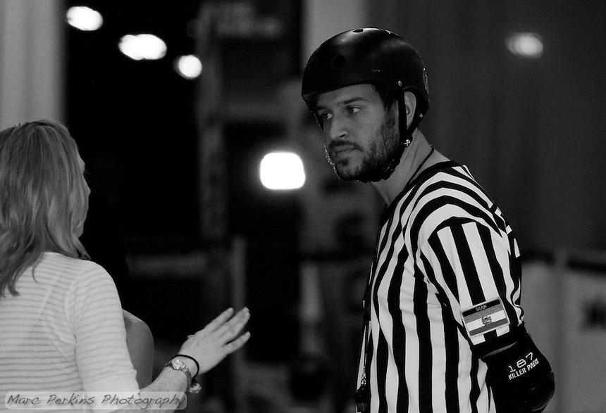Head referee Cameltron has a decidedly skeptical look as he listens to the bench coach for the Crash Test Bunnies during halftime.