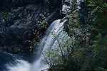 Waterfall closeup nature scenery at Little Qualicum Falls Provincial Park, Vancouver Island, BC, Canada