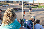 A tee ball game in Chugwater, Wyoming in August 2011. After the children play, several of the adults gather for game of their own. Chugwater's population is just under 300 people.