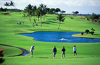 People playing golf at Wailea golf course, Maui