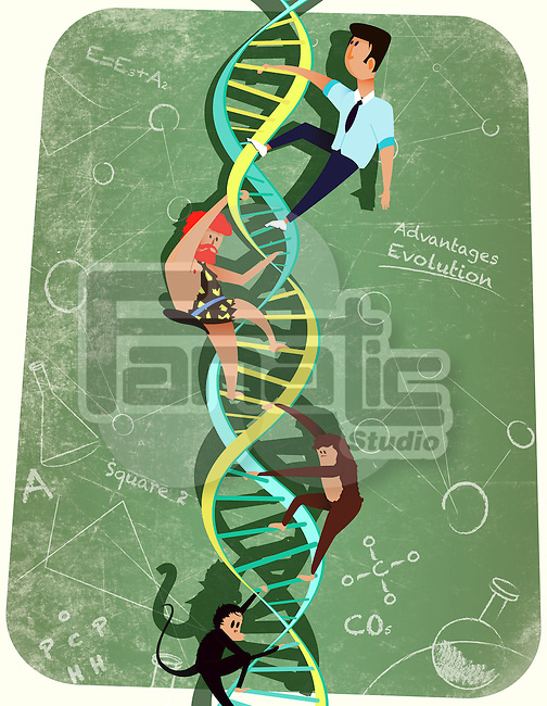 DNA strand representing evolution in human beings