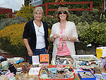 Carol Downes and Bernadette faulkner pictured at the car boot sale held at the Gary Kelly Centre. Photo: Colin Bell/pressphotos.ie