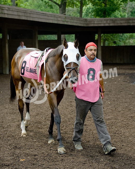 Video Storm before The Par Four Stakes at Delaware Park on 7/12/12