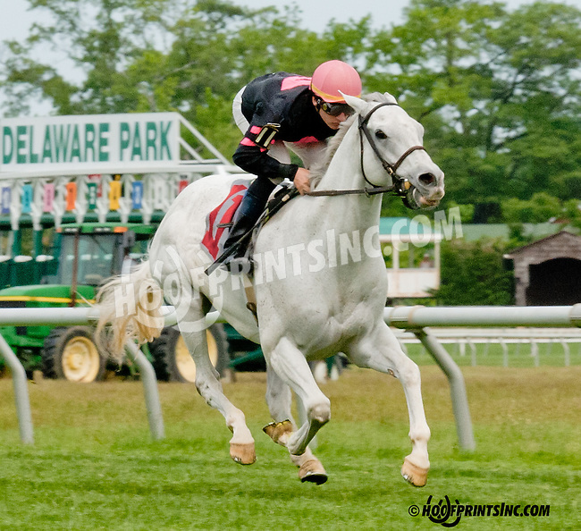 Bundestag winning at Delaware Park on 5/27/13.