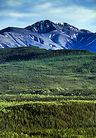 Mountain landscape in Danali National Park, Alaska, USA