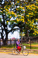 Motion blur photo of a man cycling along the streets of Negombo on his bicycle on the West Coast, Sri Lanka, Asia. This is a motion blur photo of a man cycling along the streets of Negombo on his bicycle on the West Coast, Sri Lanka, Asia.