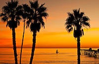 Sunset Sailing On The Pacific Ocean In Orange County California