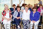 Ann Gleeson, Eileen Sweeney, Mary O'Sullivan and Siobhain Doodyat the Toureencahill Community funday on Sunday