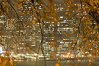 Office Buildings in Lower Manhattan, Illuminated at Night, seen thru fall foliage in Brooklyn Heights, New York City