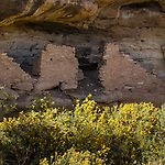 Ancestral Pueblan Native American ruins in Lem's Draw.  These ruins were built somewhere between 700 AD and 1300 AD, at which time they were abandoned.  Southeastern Utah.