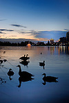 Silhouetted ducks in the Lost Lagoon in Stanley park against the background of downtown Vancouver at dusk. Vancouver, Canada