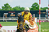 Call the Chief winning at Delaware Park on 5/27/15