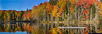 64776-011.01 Fall Color at small lake or pond Alger county in the Upper Peninsula, MI